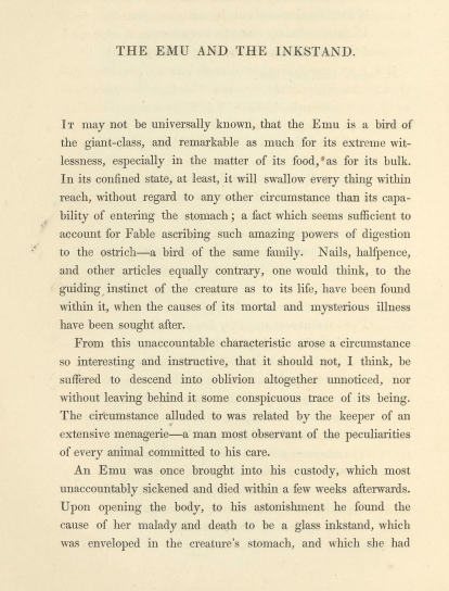 A sample page from The Emu and the Inkstand by Anonymous