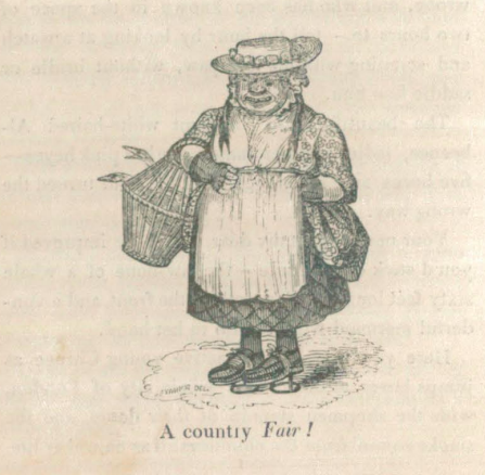 A sample page from A Country Fair or Old Aunt Letty's Fancies by Louisa H. Sheridan
